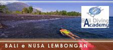 Bali e nusa lembongan sorprese sopra e sott 39 acqua - Dive time tours ...