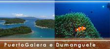 Immersioni alle filippine puerto galera e dumaguete - Dive time tours ...