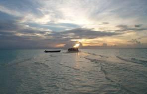 Immersioni nelle filippine arcipelago da sogno articolo su scubaportal portale subacqueo - Dive time tours ...