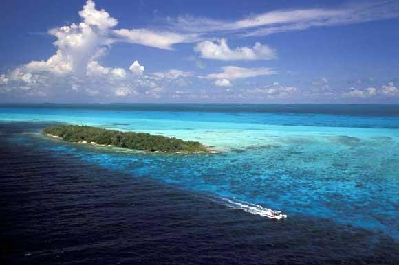 Los roques un paradiso azzurro - Dive time tours ...