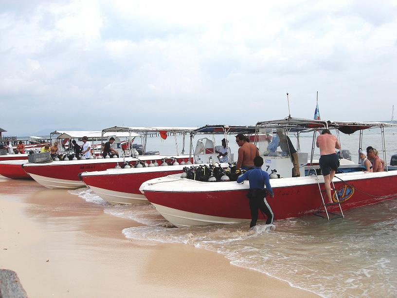 Borneo divers e dive time tours articolo su scubaportal portale subacqueo immersioni diving - Dive time tours ...