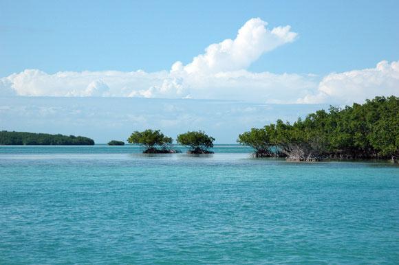Immersioni a Cuba